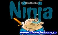 Ниндзя против мухи