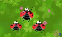 Война насекомых