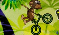Обезьяна на велосипеде