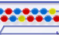 Зума линии из шариков