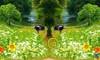 Две картинки