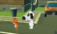 Кошачьи бега